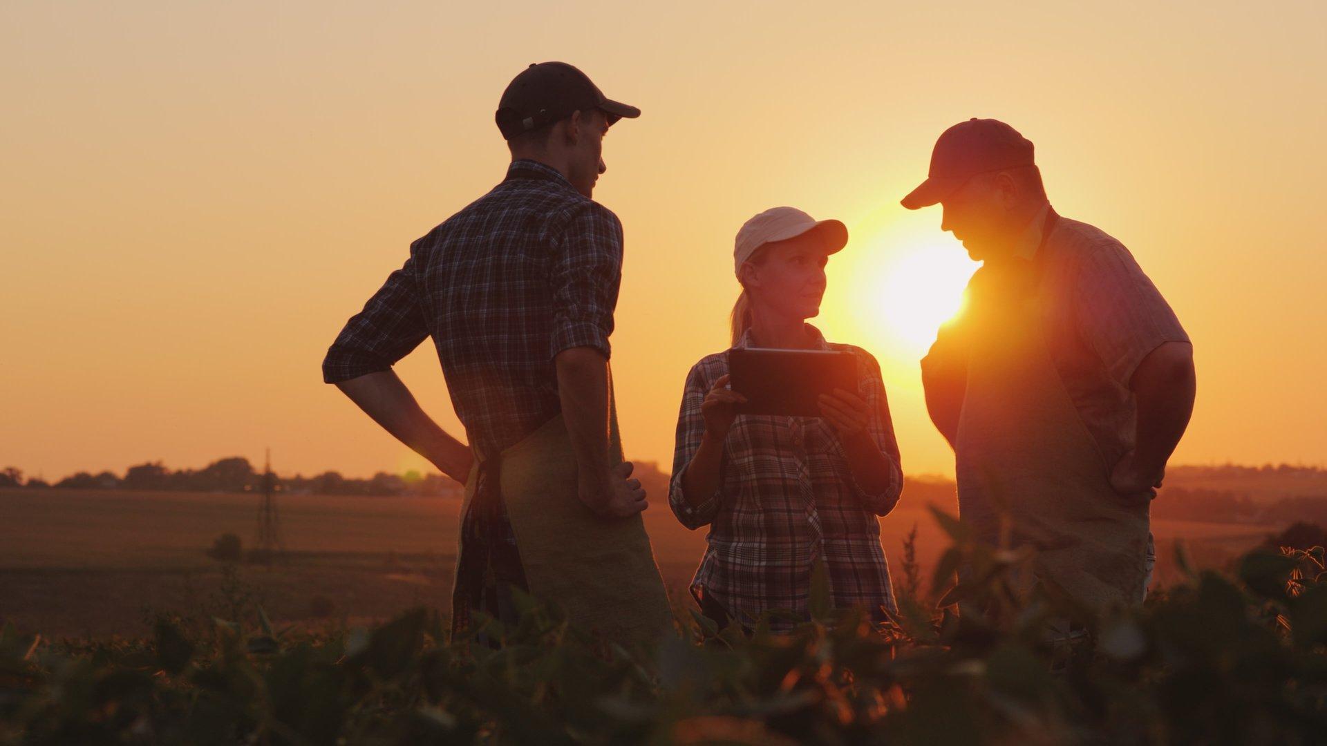 rural-wireless-mobile-farmers-field